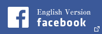 English Version facebook
